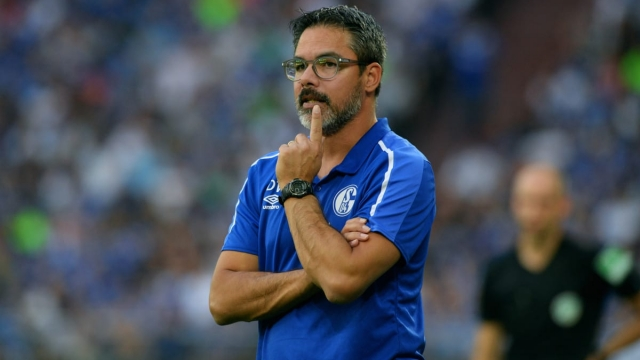 Article thumbnail: David Wagner on the sidelines during Schalke's recent win against Hertha Berlin