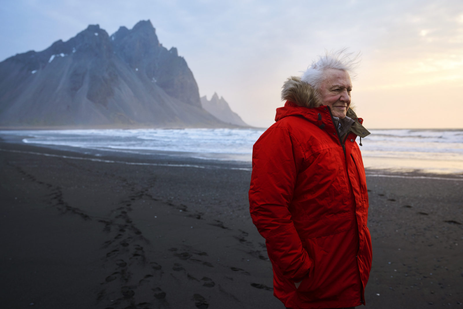 Sir David Attenborough slams whaling 'slaughter' in Seven Worlds, One Planet
