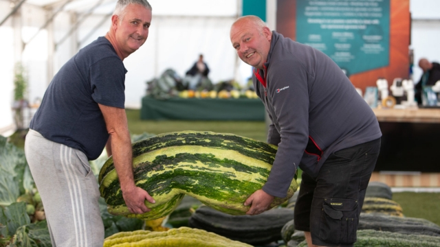 Growing giant veg is considered an extreme sport by enthusiasts