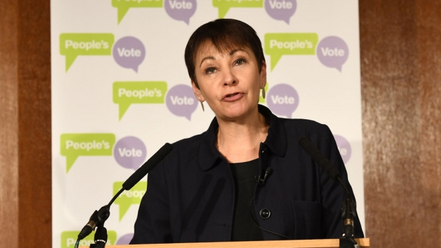 Caroline Lucas' Green Party has teamed up with the Lib Dems and Plaid Cymru