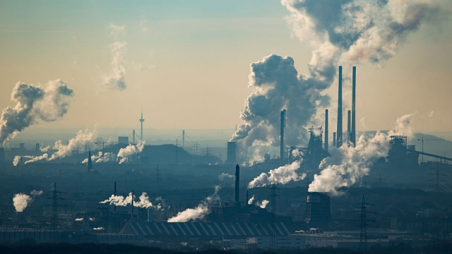 The Government has launched a review into going Zero Carbon by 2050