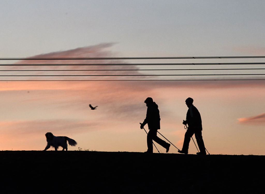 A dog has opened up the world for Nick Duerden (Photo BERND THISSEN/DPA/AFP via Getty Images)