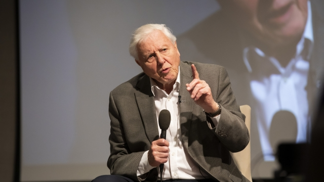 David Attenborough was speaking at the first UK-wide citizens' assembly on climate change(Photo: Fabio De Paola/PA