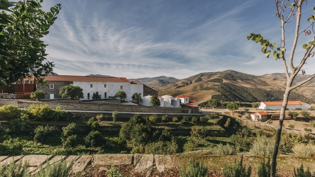 This vineyard hotel has stunning views of the terraced hills of Portugal's Douro Valley