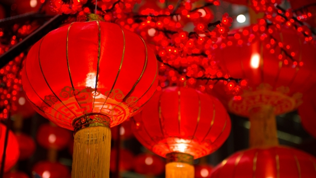 Chinese New Year officially begins on Saturday 25 January 2020 (Photo: Shutterstock)