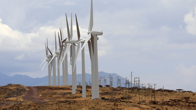 Wind energy delivered a quarter of the reduction in carbon emissions.