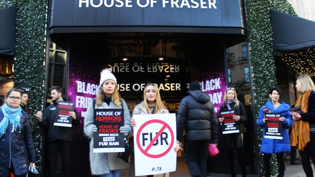 Article thumbnail: Peta activists outside House of Fraser on Black Friday 2019 (Photo: Peta)