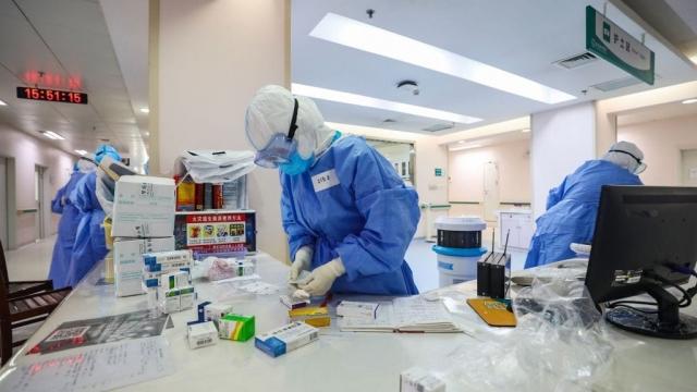 Scientists working on coronavirus