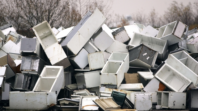 Old fridges are a major source of CFC pollution