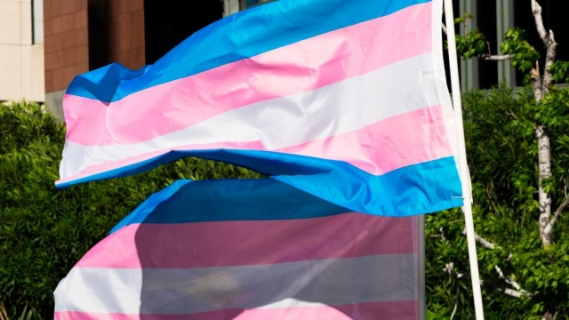 The trans pride flag used by transgender activists (Photo: Getty Images)