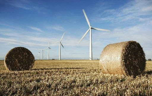 Westmill Wind Farm Co-op in Watchfield near Swindon