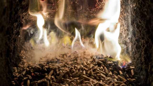Article thumbnail: Thousands of biomass boilers have been installed since 2010