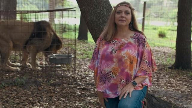 Carole Baskin on Tiger King