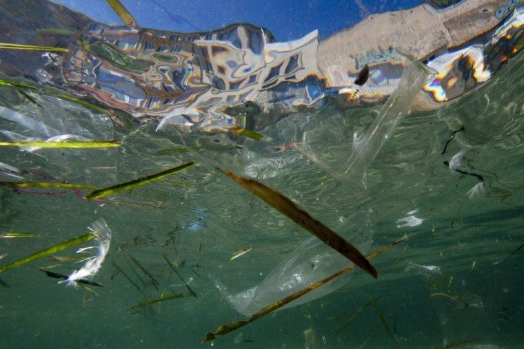 Plastic debris is polluting the world's oceans
