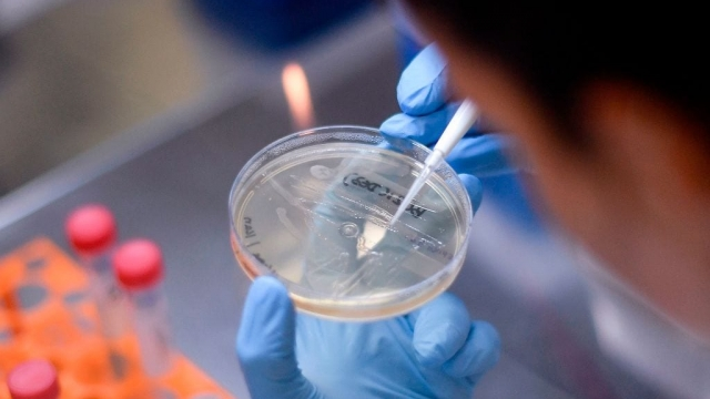 Researchers around the world are racing to find treatments that will help coronavirus patients.