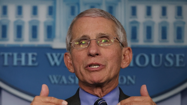 Dr Anthony Fauci broke ranks with the President over his view