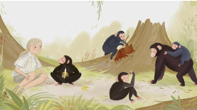 Dr Jane Goodall is among the environmentalists celebrated in artistic form in the new book 'Climate Haroes' (Illustration: Hannah Peck)