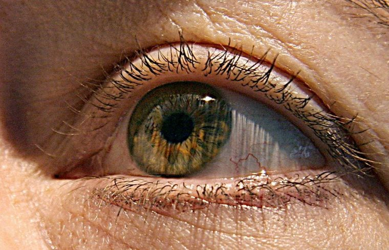 US scientists have identified two genes responsible for macular degeneration, the gradual deterioration of eyesight in the elderly that can lead to blindness, a study showed this week.The research published 24 April 2007, in the Journal of the American Medical Association also showed that smoking and being overweight carry a strong risk of the condition, in which the central part of the eye's retina degenerates. (Photo credit should read KAREN BLEIER/AFP via Getty Images)